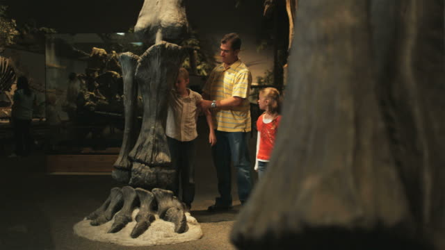 ws pan man with daughter (8-9) and son (10-11) in natural history museum, lehi, utah, usa - lehi stock videos & royalty-free footage