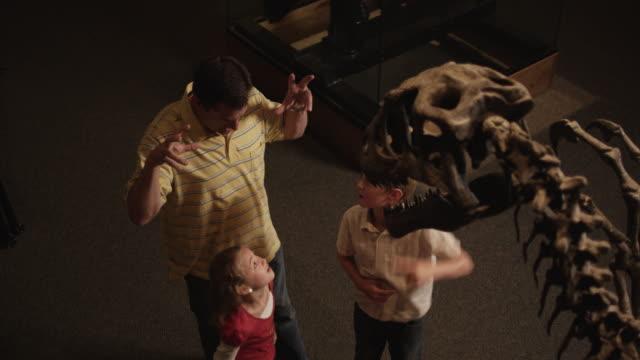 ms ha man with daughter (8-9) and son (10-11) in natural history museum, lehi, utah, usa - 博物館点の映像素材/bロール