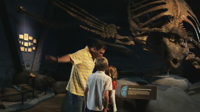 vidéos et rushes de ms man with daughter (8-9) and son (10-11) in natural history museum, lehi, utah, usa - lehi