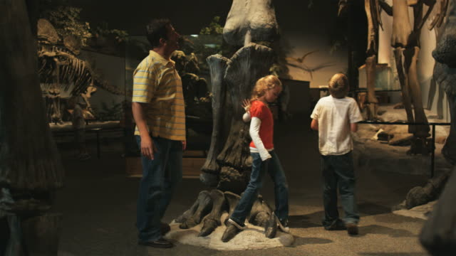 ws pan man with daughter (8-9) and son (10-11) in natural history museum, lehi, utah, usa - museum stock videos & royalty-free footage
