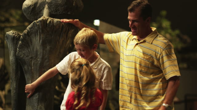 ms man with daughter (8-9) and son (10-11) in natural history museum, lehi, utah, usa - lehi stock-videos und b-roll-filmmaterial