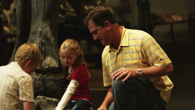 ms tu man with daughter (8-9) and son (10-11) in natural history museum, lehi, utah, usa - lehi stock-videos und b-roll-filmmaterial