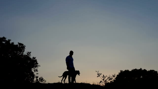 man with dog at sunset - hsyncoban stock videos and b-roll footage