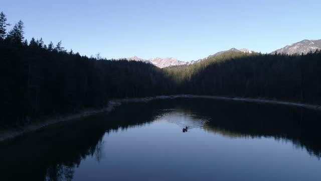 man with dog in canoe, bavaria, germany - wilderness stock videos & royalty-free footage