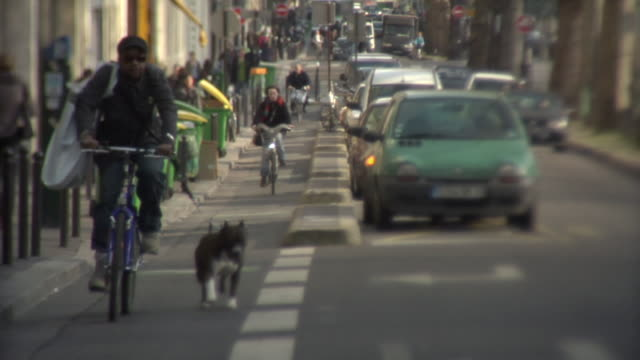 WS CU SELECTIVE FOCUS Man with dog riding bicycle on busy street, Paris, France