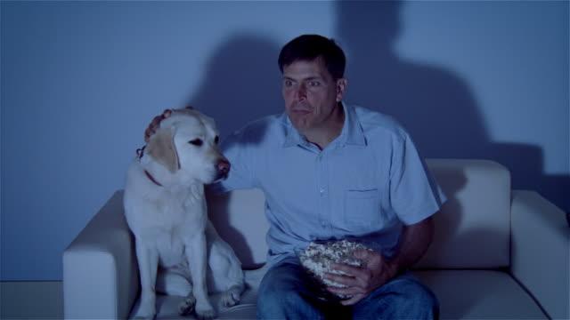 vídeos y material grabado en eventos de stock de ms, man with dog sitting on sofa, watching tv - one mature man only