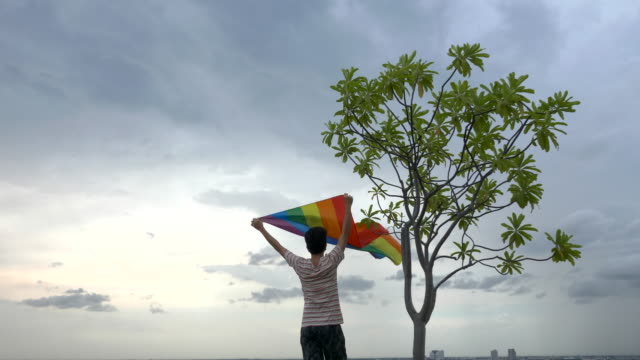 man with rainbow colour lgbt flag - social justice concept stock videos & royalty-free footage