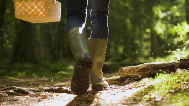 man with rubber boots walking through a forest - autumn stock videos & royalty-free footage
