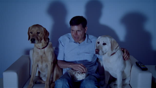MS, Man with two dogs sitting on sofa, watching TV