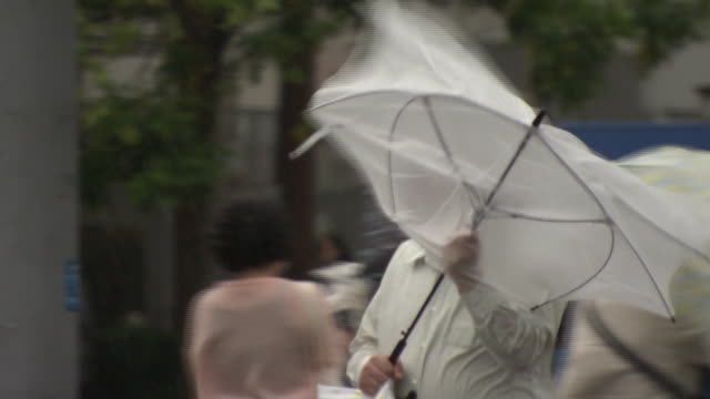man with umbrella walking in storm, yokohama, japan - deformed stock videos & royalty-free footage