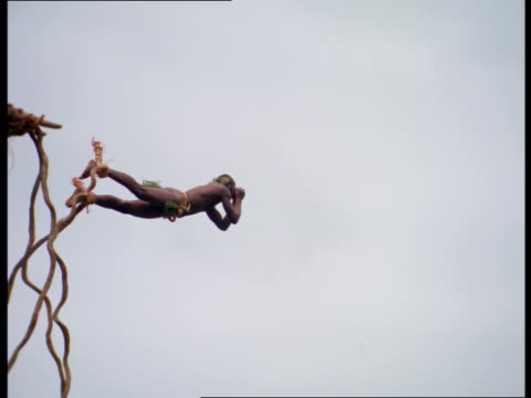 vídeos y material grabado en eventos de stock de a man with vines tied to his ankles land dives off a platform and lands headfirst near the ground. - puenting