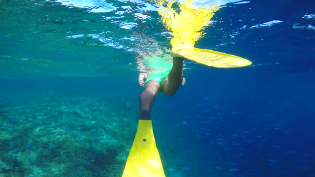 a man with yellow fins snorkeling over a coral reef of a tropical island. - slow motion - yellow stock videos & royalty-free footage