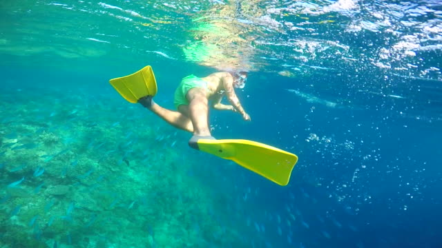 stockvideo's en b-roll-footage met a man with yellow fins snorkeling over a coral reef of a tropical island. - slow motion - zwemvlies