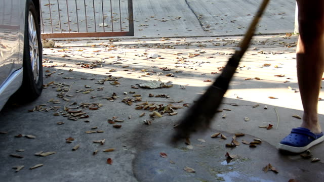 Man worker gather dry tree leave
