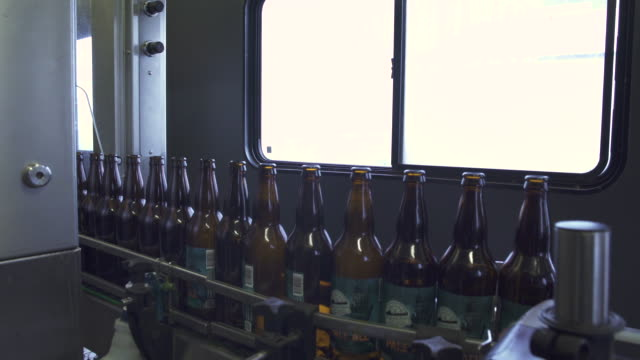 vídeos de stock e filmes b-roll de man working at a bottling line in a brewery - protetor de ouvido