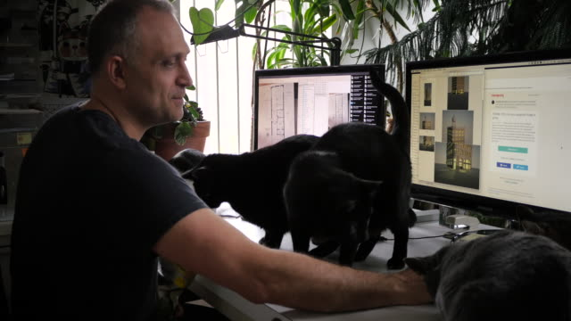 Man working at desk surrounded by cats and plants