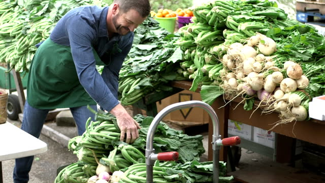 man working at produce stand - organic stock videos & royalty-free footage