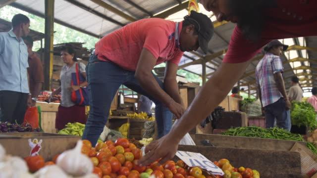 vídeos de stock e filmes b-roll de man working at vegetables market stall at colombo, sri lanka - feirante
