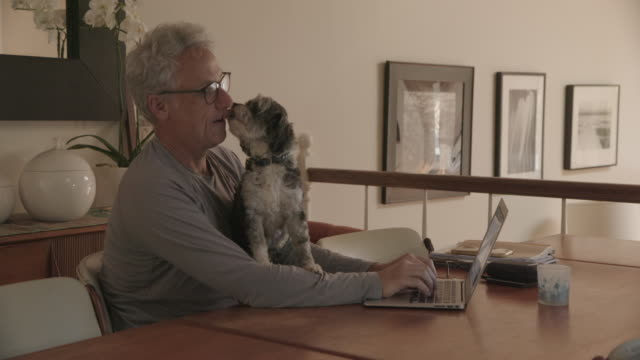man working from home with dog - employment issues stock videos & royalty-free footage
