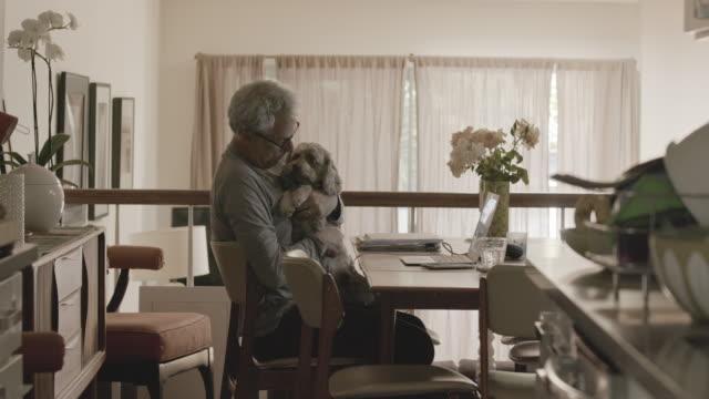 vídeos y material grabado en eventos de stock de man working from home with dog - herramientas profesionales