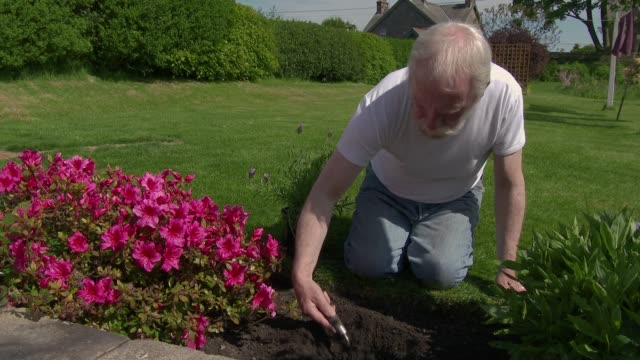 vídeos de stock e filmes b-roll de man working in garden - terreno