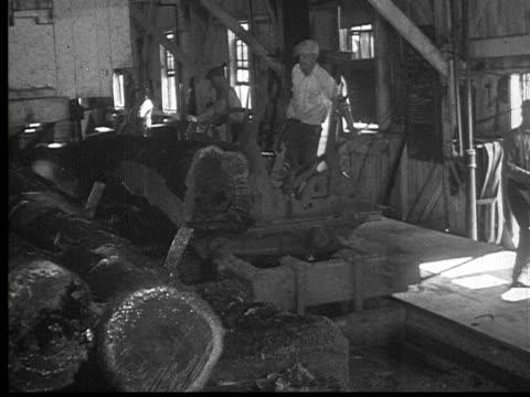 1927 b/w montage ms pan man working on timber cutting machine in lumberyard, ontario, canada - 材木置き場点の映像素材/bロール