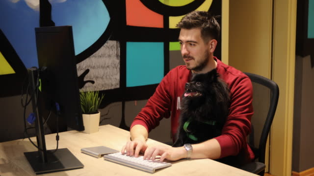 man working with his black pomeranian dog at pet friendly office - curiosity stock videos & royalty-free footage