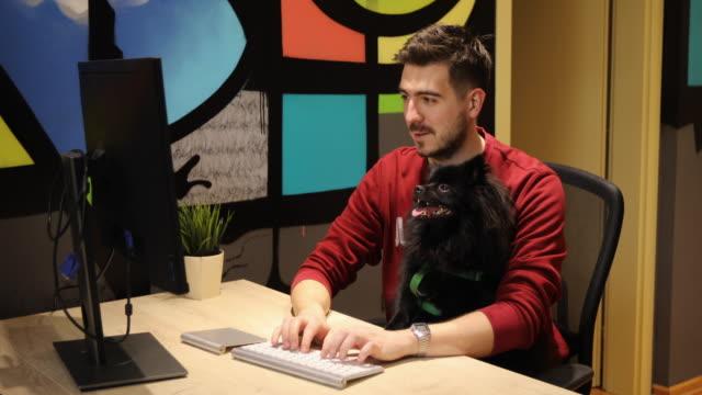 vídeos de stock, filmes e b-roll de homem trabalhando com seu cão preto pomerânia em escritório pet friendly - curiosidade