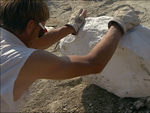 vidéos et rushes de man writing on plaster cast of dinosaur bone at t. rex excavation site / hell creek, montana - archéologie