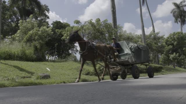 mand driving horsedrawn trailer on road in havana cuba - horsedrawn stock videos & royalty-free footage