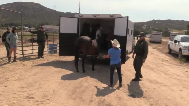 Mandatory evacuation from the Border Fire The US Border Patrol and other services come to the aid of the female rancher
