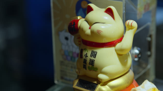 maneki-neko at raohe night market - nachtmarkt stock-videos und b-roll-filmmaterial