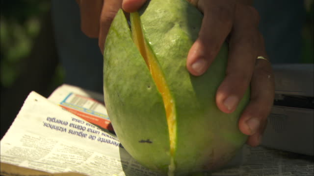 A mango is cut in half.