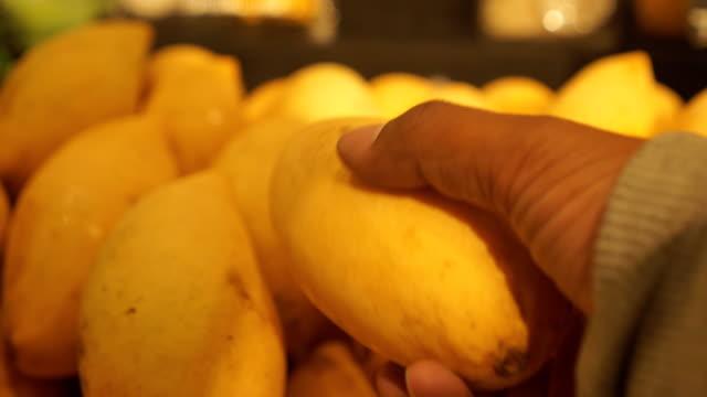 mango - mango stock videos and b-roll footage