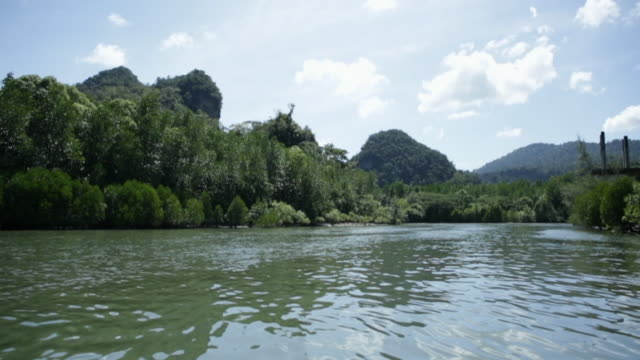 pov ts mangrove forest and mountains of langkawi, malaysia - langkawi stock videos and b-roll footage