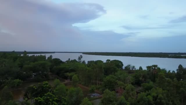 mangrove forests and fields thrive on the islands of sunderbans, india - westbengalen stock-videos und b-roll-filmmaterial