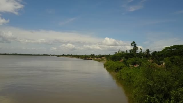 mangrove forests line the shores of the islands of sunderbans, india - westbengalen stock-videos und b-roll-filmmaterial