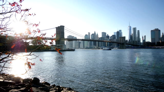 manhattan bridge and new york skyline - river east stock videos & royalty-free footage