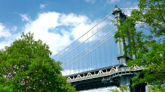 Puente de Manhattan y árbol, naturaleza