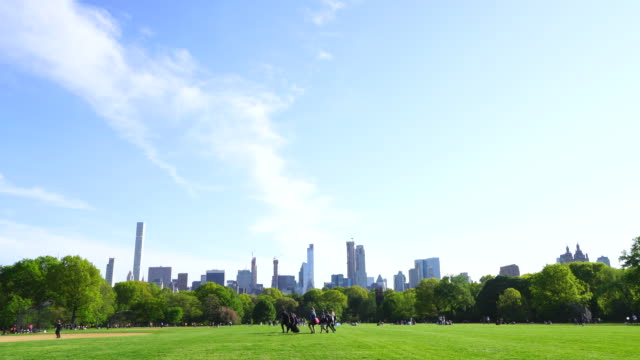 manhattan midtown skyscrapers are seen behind rows of fresh green trees of great lawn at central park new york usa on may 09 2018. - great lawn stock videos and b-roll footage