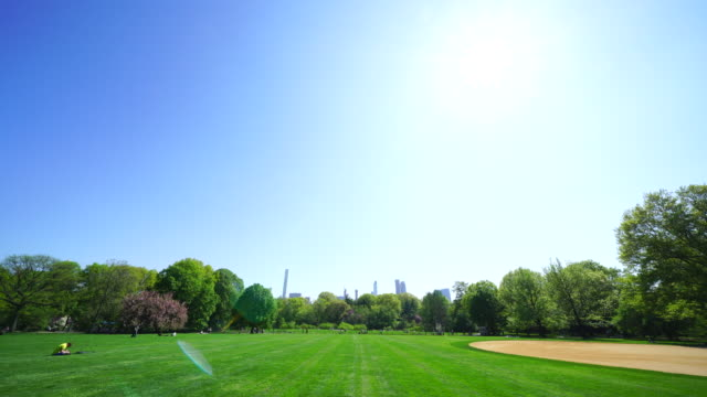 manhattan midtown skyscrapers are seen behind rows of fresh green trees of great lawn under the clear blue sky at central park new york usa on may 08 2018. - great lawn stock videos and b-roll footage