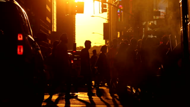 manhattan sunset street scene - pedestrian crossing stock videos & royalty-free footage