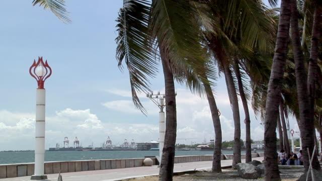 ms, manila bay seen from roxas boulevard, manila, philippines - fan palm tree stock videos & royalty-free footage