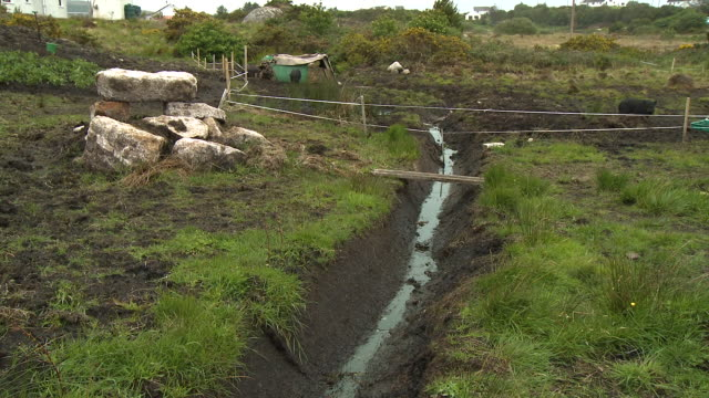 vidéos et rushes de man-made irrigation in farmland - nez d'animal