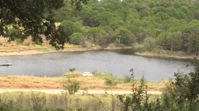manmade lake in central texas - pinaceae stock videos & royalty-free footage