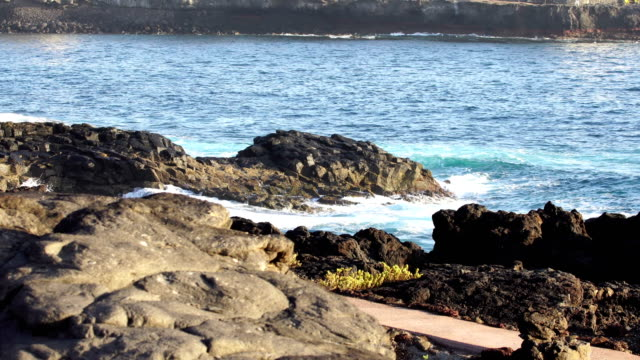 playa del hombre - grand canary - grand canary stock videos and b-roll footage