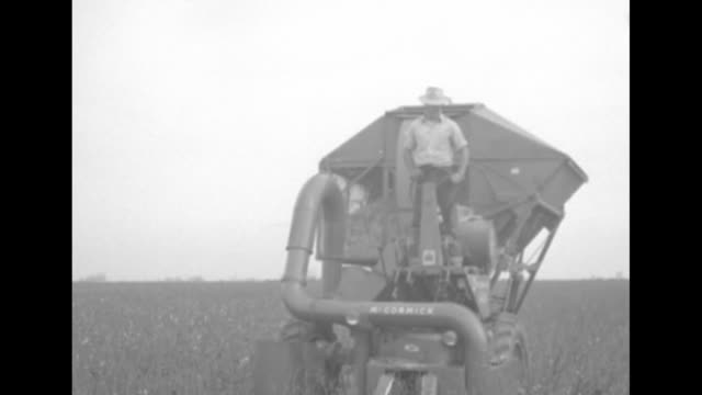 "vidéos et rushes de man's hand holding card that says ""vail"" / shot of cotton field / farmer harvesting cotton with cotton harvesting machine / close view of machine... - fresno"