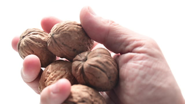 man's hand with a few walnuts. - nutshell stock videos & royalty-free footage