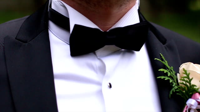 man's hands touches bow-tie - formal stock videos and b-roll footage