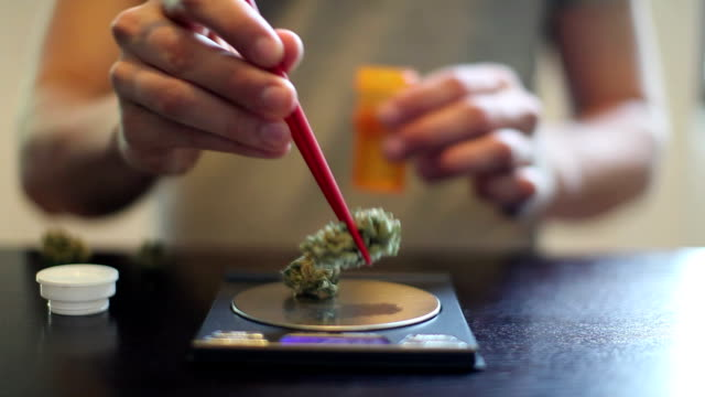 CU SELECTIVE FOCUS Man's hands using chop sticks to place medicinal marijuana on digital scale and then into prescription bottles / Simi Valley, California, USA